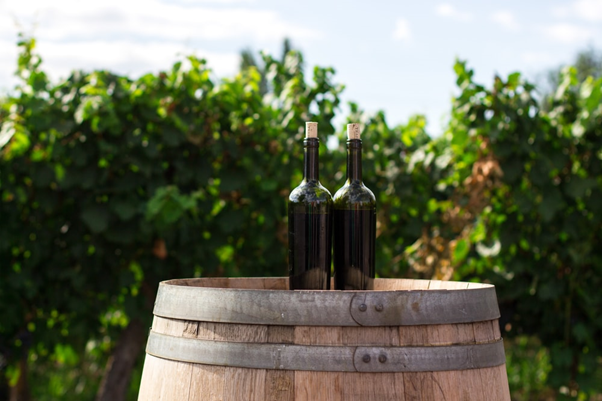 Top 7 Impressive Wine Tours To Experience In France