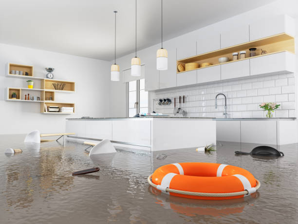 How to Properly Take Care of Water Damage in Your Home After a Flood
